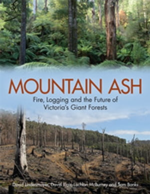 Mountain Ash Fire,  Logging and the Future of Victoria's Giant Forests