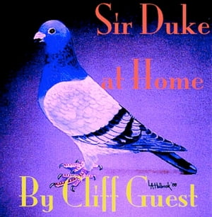 Sir Duke at Home Sir Duke Pigeon Series