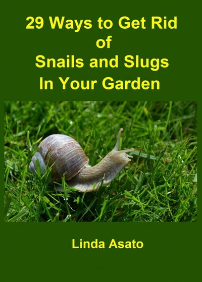 29 Ways To Get Rid Of Snails And Slugs In Your Garden De Linda Asato En Gandhi