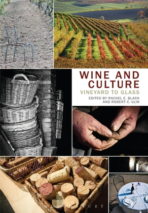 Wine and Culture Vineyard to Glass