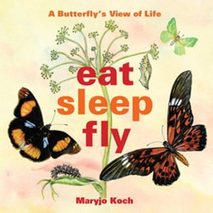 Eat,  Sleep,  Fly A Butterfly's View of Life