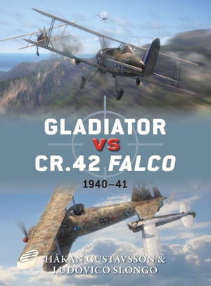 Gladiator vs CR.42 Falco 1940?41
