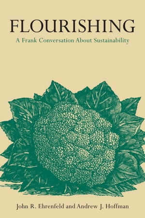Flourishing A Frank Conversation about Sustainability