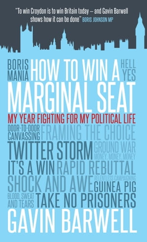 How to Win a Marginal Seat My Year Fighting For My Political Life