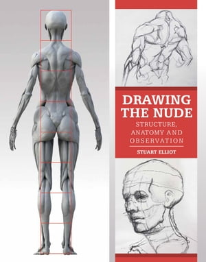 Drawing the Nude Structure,  Anatomy and Observation