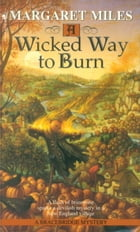 A Wicked Way to Burn Cover Image