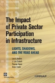 The Impact Of Private Sector Participation In Infrastructure: Lights, Shadows, And The Road Ahead