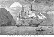 The Voyage of the Beagle, Or a Naturalist's Voyage Round the World