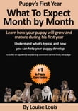 Puppy's First Year: What To Expect Month by Month