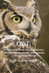 OWL A True Story About Heroin Addiction, Mother Nature, Magic and Miracles . . . Among Other Things