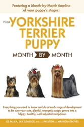 Your Yorkshire Terrier Puppy Month By Month