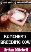 Rancher's Breeding Cow: Bred and Blackmailed (Impregnation Sex)