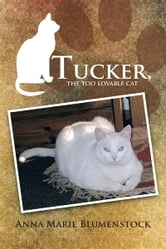 Tucker, the too lovable cat