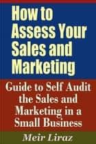 How to Assess Your Sales and Marketing: Guide to Self Audit the Sales and Marketing in a Small Business - Small Business Management ebook by Meir Liraz