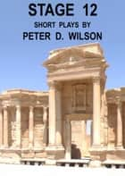 Stage 12 ebook by Peter D Wilson