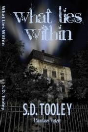 What Lies Within ebook by S.D. Tooley