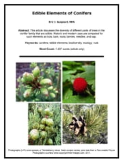 Edible Elements of Conifers ebook by Eric J. Guignard