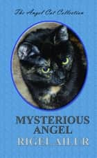 Mysterious Angel ebook by Rigel Ailur