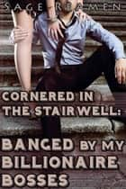 Cornered in the Stairwell: Banged by my Billionaire Bosses ebook by Sage Reamen