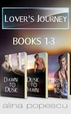 Lover's Journey Series Books 1-3 - A Contemporary Gay Romance ebook by Alina Popescu
