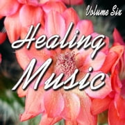 Healing Music Vol. 6 audiobook by Antonio Smith