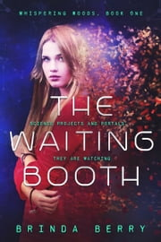 The Waiting Booth ebook by Brinda Berry