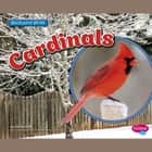 Cardinals audiobook by Lisa Amstutz