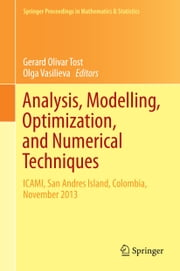 Analysis, Modelling, Optimization, and Numerical Techniques - ICAMI, San Andres Island, Colombia, November 2013 ebook by Gerard Olivar Tost,Olga Vasilieva