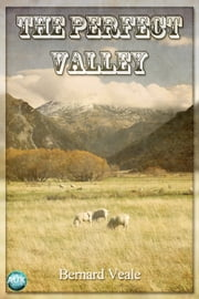 The Perfect Valley ebook by Bernard Veale