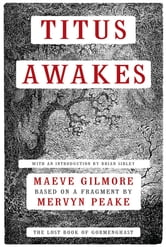 Titus Awakes: A Novel ebook by Mervyn Peake,Maeve Gilmore