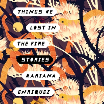 Things We Lost in the Fire - Stories audiobook by Mariana Enriquez