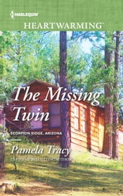 The Missing Twin - A Clean Romance ebook by Pamela Tracy