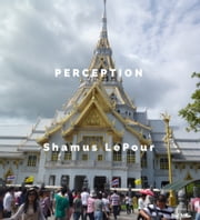 Perception ebook by Shamus LePour