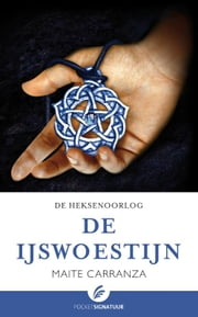 De ijswoestijn ebook by Maite Carranza