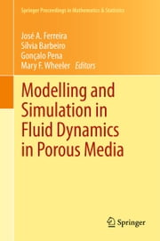 Modelling and Simulation in Fluid Dynamics in Porous Media ebook by José A. Ferreira,Gonçalo Pena,Mary F. Wheeler,Silvia Barbeiro