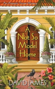 A Not So Model Home ebook by David James