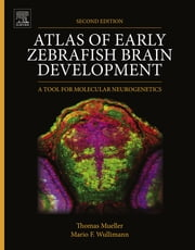 Atlas of Early Zebrafish Brain Development - A Tool for Molecular Neurogenetics ebook by Dr. Thomas Mueller,Mario Wullimann
