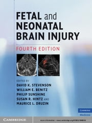 Fetal and Neonatal Brain Injury ebook by
