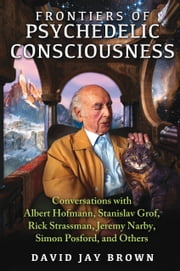 Frontiers of Psychedelic Consciousness - Conversations with Albert Hofmann, Stanislav Grof, Rick Strassman, Jeremy Narby, Simon Posford, and Others ebook by David Jay Brown