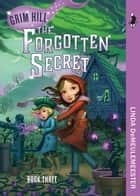 The Forgotten Secret ebook by Linda Demeulemeester