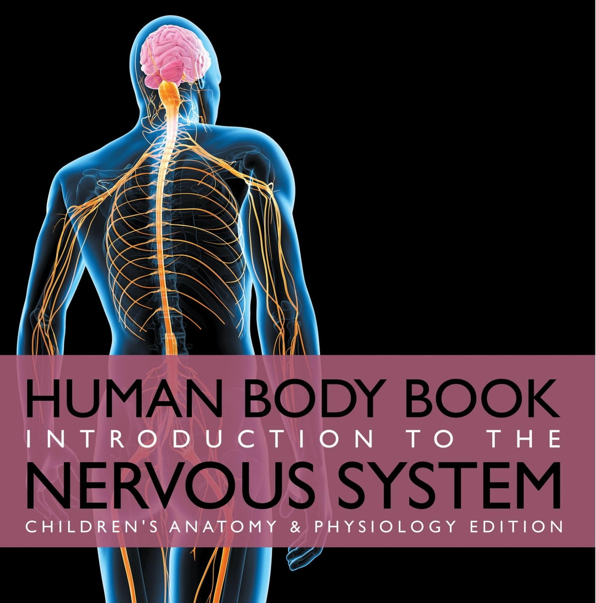 Human Body Book | Introduction to the Nervous System | Children\'s ...