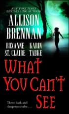 What You Can't See ebook by