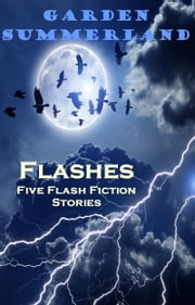 Flashes: Five Flash Fiction Stories ebook by Garden Summerland