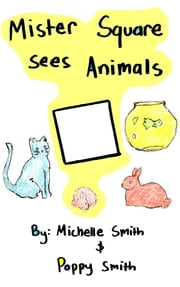 Mister Square Sees Animals ebook by Michelle Smith,Poppy Smith
