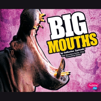 BIG Mouths audiobook by Catherine Ipcizade