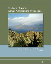 Surface Ocean - Lower Atmosphere Processes ebook by Eric S. Saltzman,Corinne Le Quéré