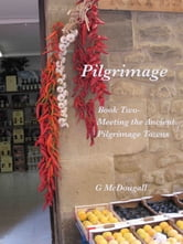 Pilgrimage: Meeting Spain's Pilgrim Towns ebook by G McDougall