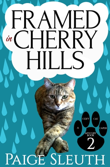 Framed in Cherry Hills ebook by Paige Sleuth