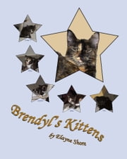 Brendyl's Kittens ebook by Elayne Shore