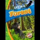 Life in a Forest audiobook by Laura Hamilton Waxman